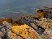 Lochranza Bay shoreline