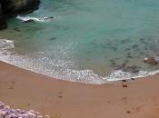 Whipsidary Bay