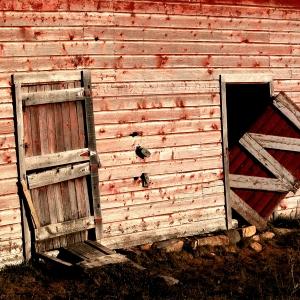Morgan Ranch, Gallatin, Montana