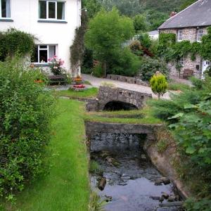 Moylgrove Garden Stream