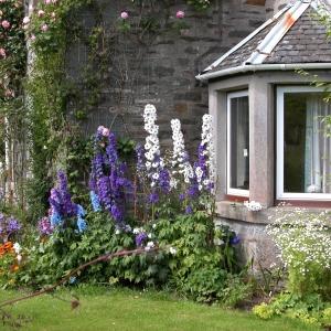 Kirkton, Loch Craignish
