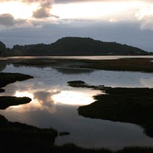 River Add, Moine Mhor