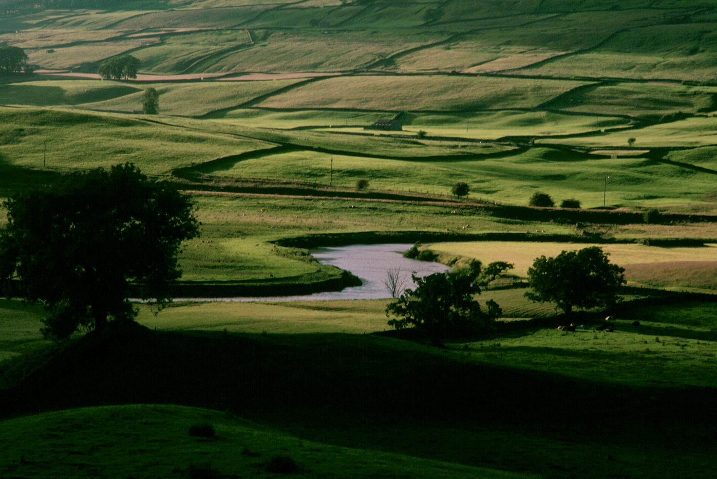 Near Hawes, late afternoon.